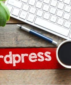 WordPress-Einrichtung